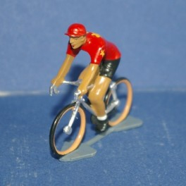 Chinese team cyclist
