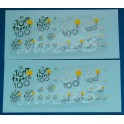 Decals Tour de France 100th edition 1/43 - set of 2