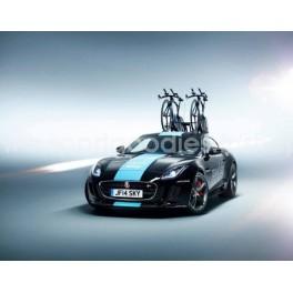 Jaguar F-Type Coupe R Team Sky TDF 2014