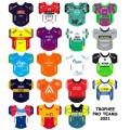 Pro Teams 2021 jerseys stickers